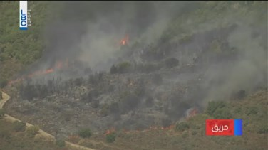REPORT: Fire devours trees in Aley's Rechmaya