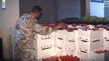 REPORT: Tons of smuggled tomatoes seized in Qab Elias