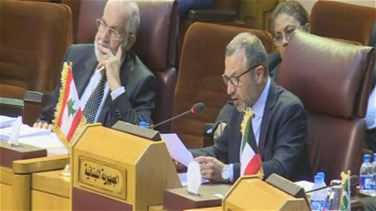 Bassil at Arab FMs meeting: I am not blind not to see a plan being passed at a moment of Arab weakness