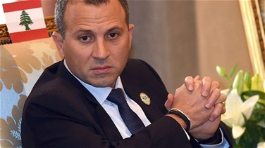 Bassil wraps up visit to Ireland, meets with Lebanese expatriates