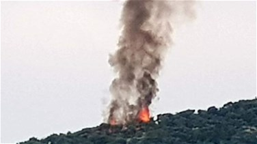Huge fire breaks out in Donnieh forest (Photos & Video)