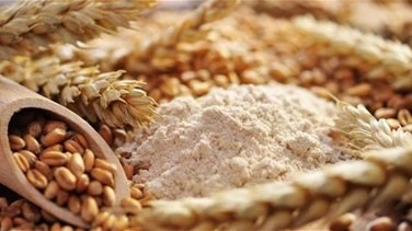 World Food Program to send 50,000 T of wheat flour to Lebanon - UN